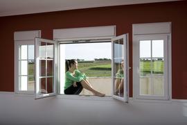 residential window